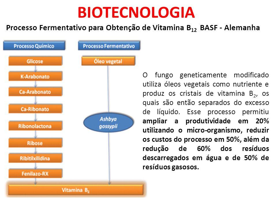 BIOTECNOLOGIA Processo Fermentativo para Obtenção de Vitamina B12 BASF - Alemanha.