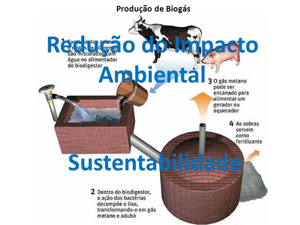 Redução do Impacto Ambiental