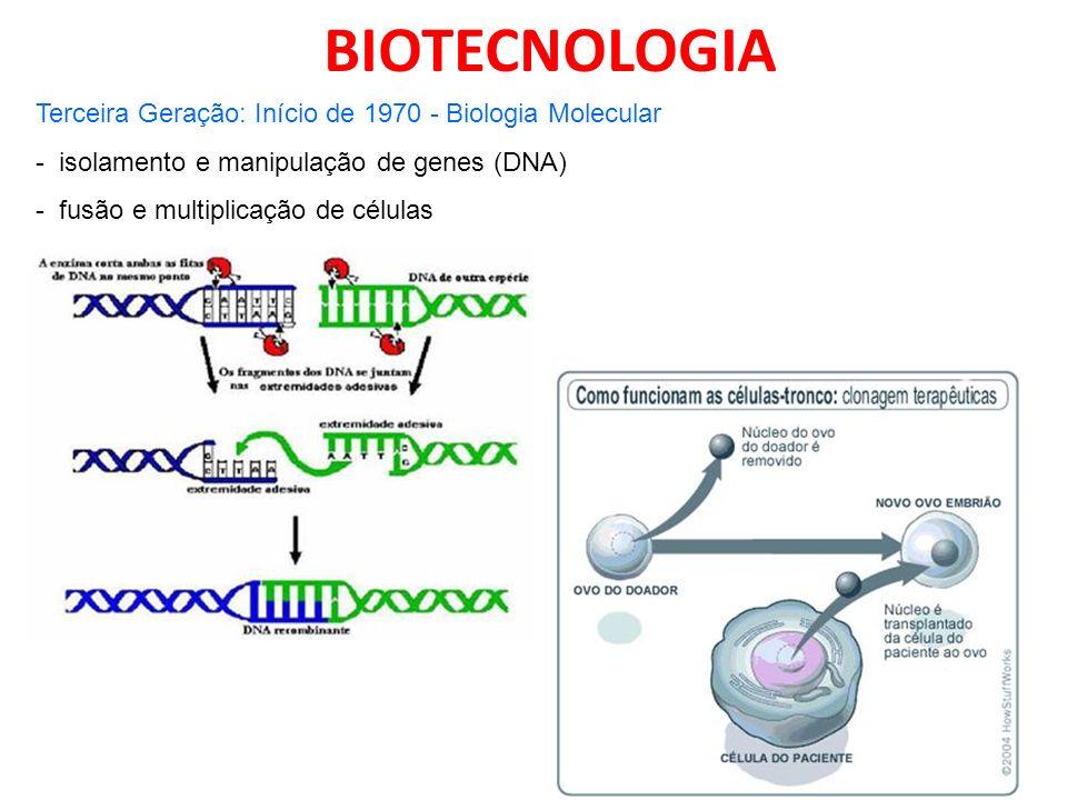 BIOTECNOLOGIA Terceira Geração: Início de 1970 - Biologia Molecular