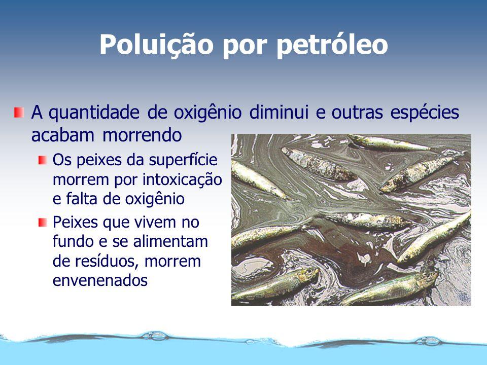 Poluição por petróleo As aves marinhas ficam com o corpo impregnado de óleo. Deixam de reter o ar entre as penas e morrem afogadas ao mergulhar.