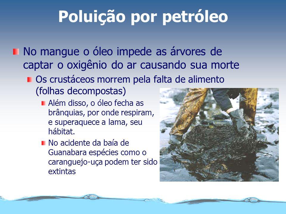 Poluição por petróleo Com o ecossistema comprometido milhares de pessoas ficam sem trabalho. Famílias de pescadores perdem sua fonte de sustento.