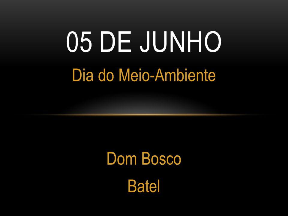 Dia do Meio-Ambiente Dom Bosco Batel
