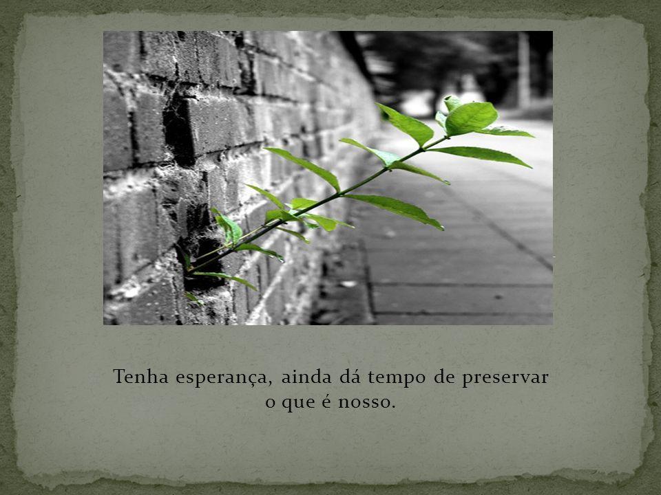 Tenha esperança, ainda dá tempo de preservar o que é nosso.