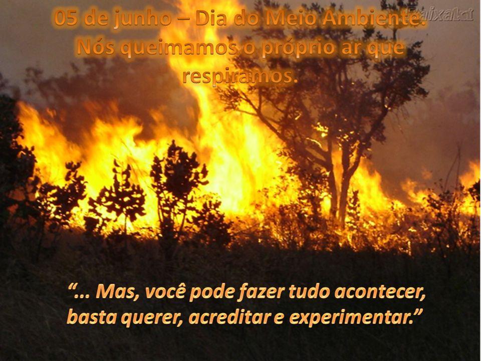 05 de junho – Dia do Meio Ambiente