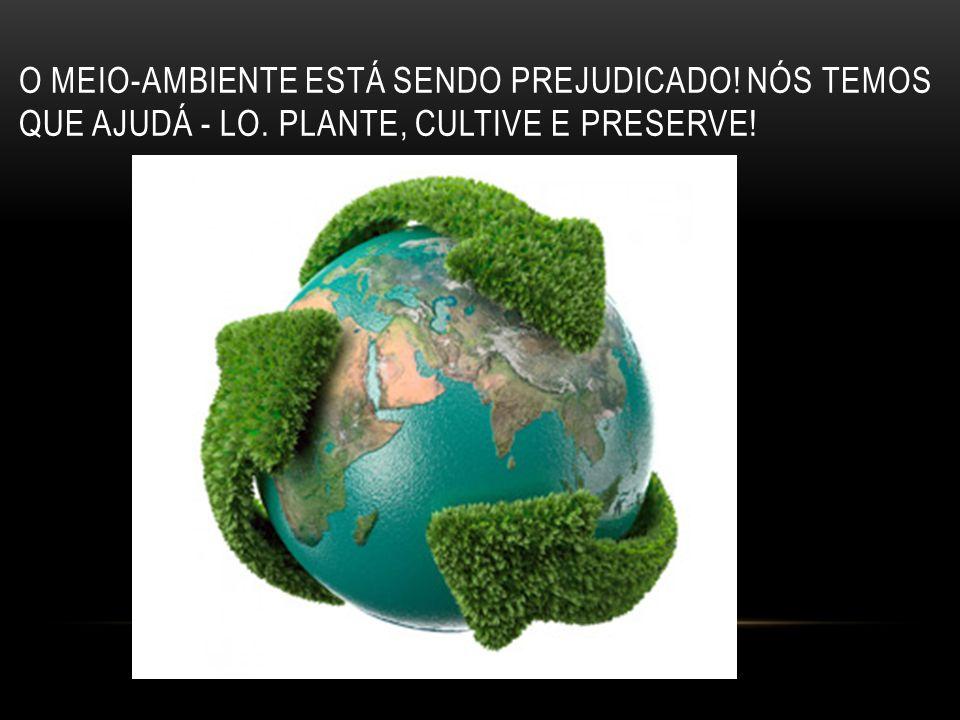 O Meio-Ambiente está sendo prejudicado. Nós temos que ajudÁ - lo