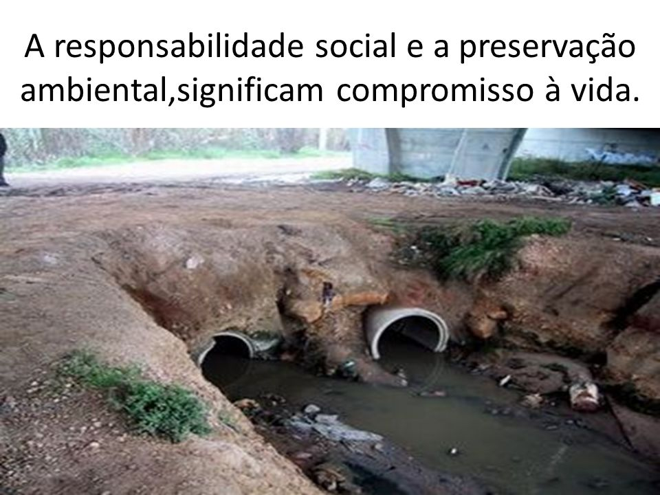 A responsabilidade social e a preservação ambiental,significam compromisso à vida.