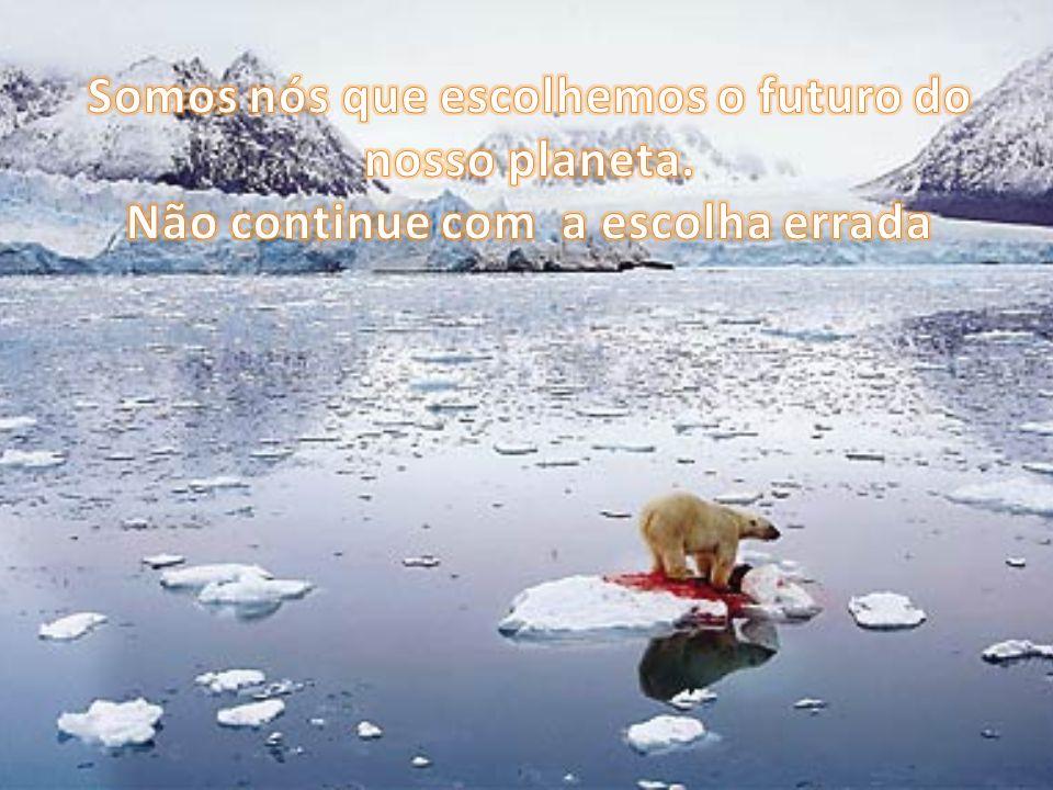 Somos nós que escolhemos o futuro do nosso planeta
