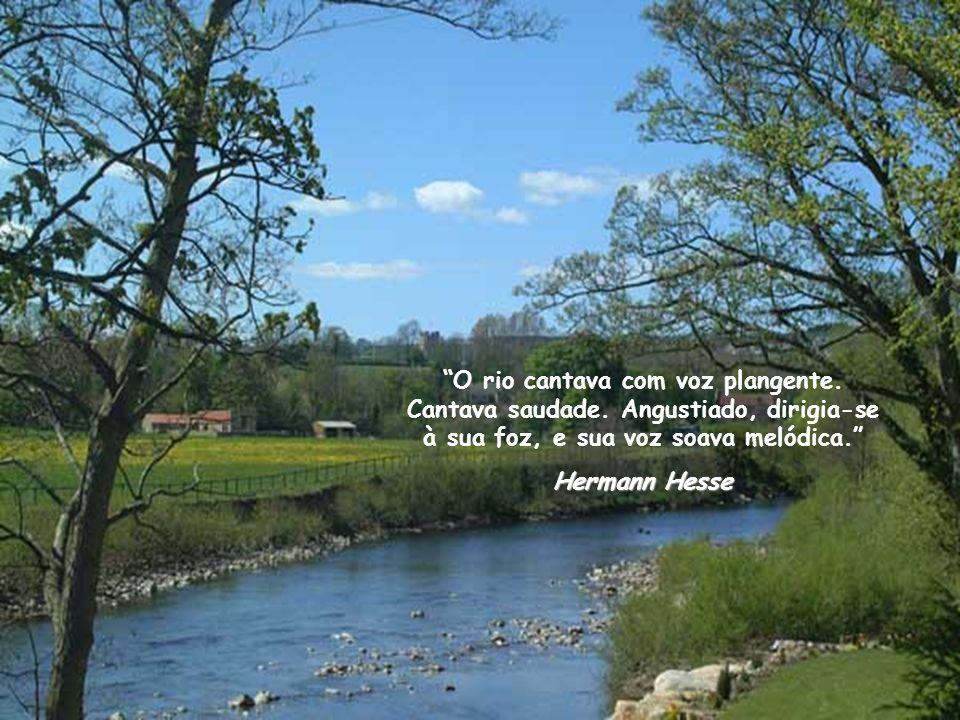 O rio cantava com voz plangente. Cantava saudade