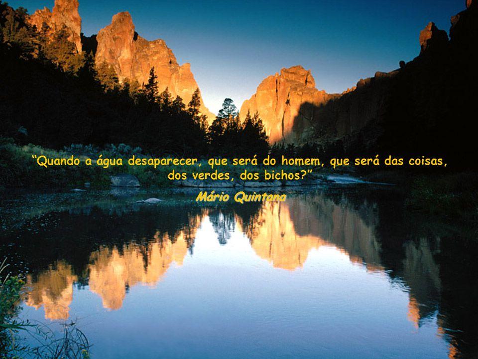 Quando a água desaparecer, que será do homem, que será das coisas, dos verdes, dos bichos