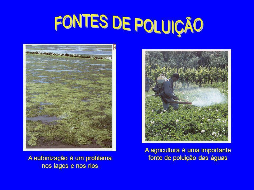 FONTES DE POLUIÇÃO A agricultura é uma importante fonte de poluição das águas.