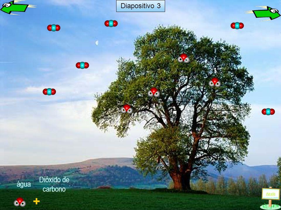 Diapositivo 3 Dióxido de carbono água Ajuda +