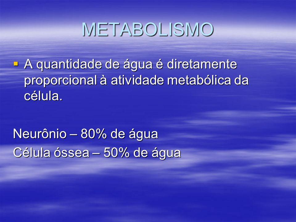METABOLISMO A quantidade de água é diretamente proporcional à atividade metabólica da célula. Neurônio – 80% de água.