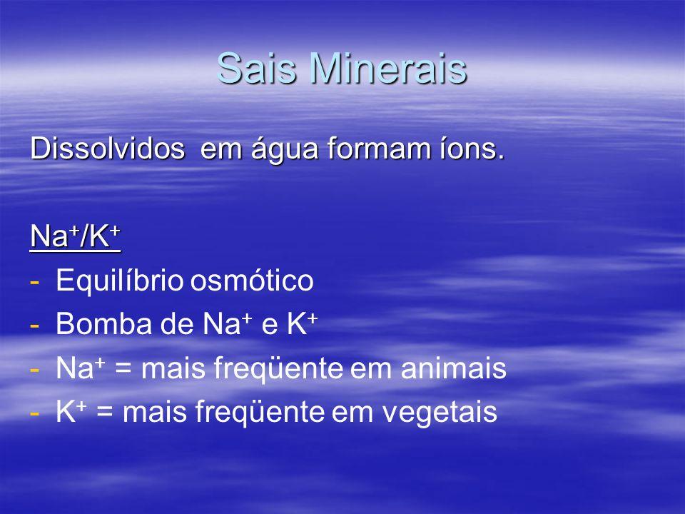 Sais Minerais Dissolvidos em água formam íons. Na+/K+