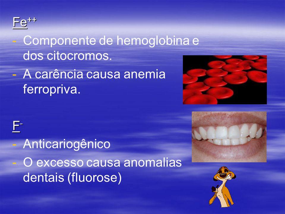 Fe++ Componente de hemoglobina e dos citocromos. A carência causa anemia ferropriva. F- Anticariogênico.
