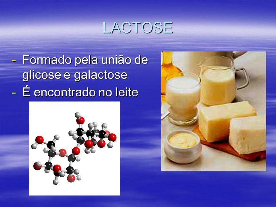 LACTOSE Formado pela união de glicose e galactose