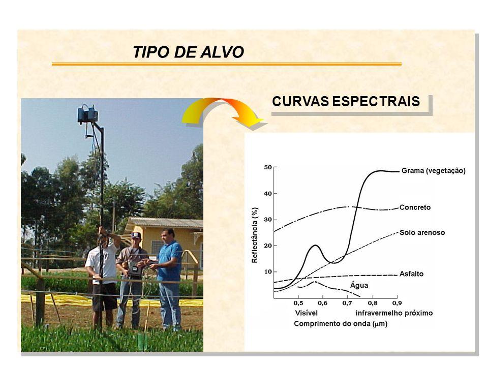 TIPO DE ALVO CURVAS ESPECTRAIS
