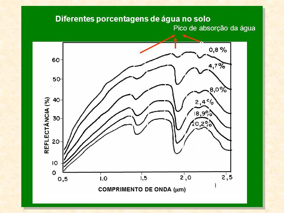 Diferentes porcentagens de água no solo