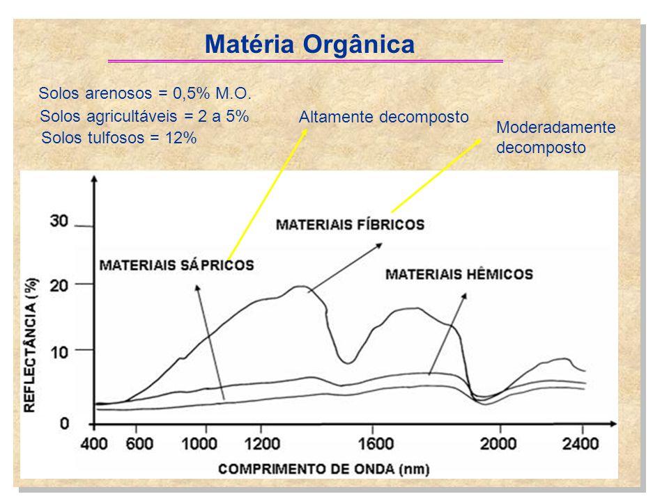 Matéria Orgânica Solos arenosos = 0,5% M.O.