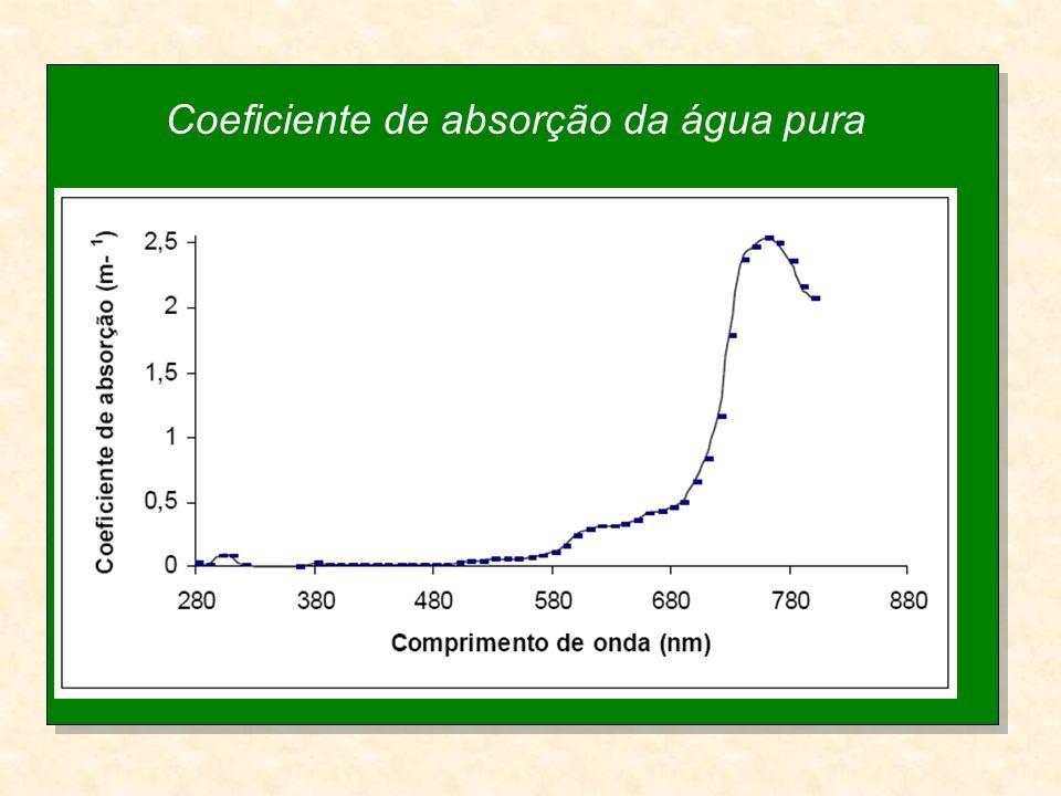 Coeficiente de absorção da água pura