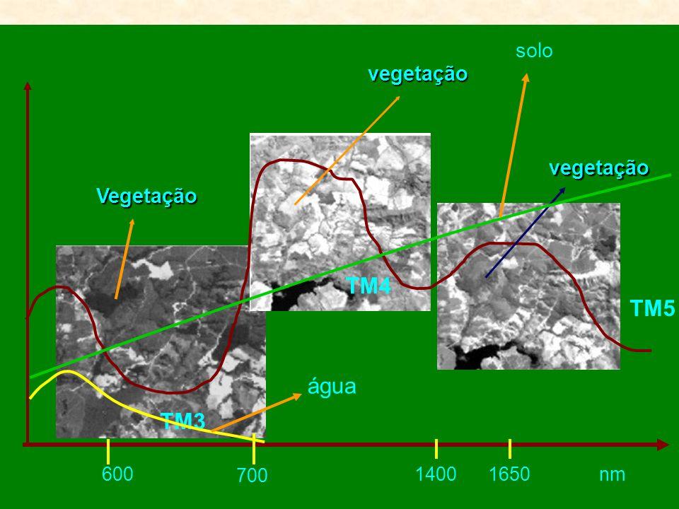 TM4 TM5 água TM3 solo vegetação vegetação Vegetação 600 700 1400 1650