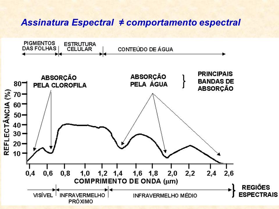 Assinatura Espectral ≠ comportamento espectral