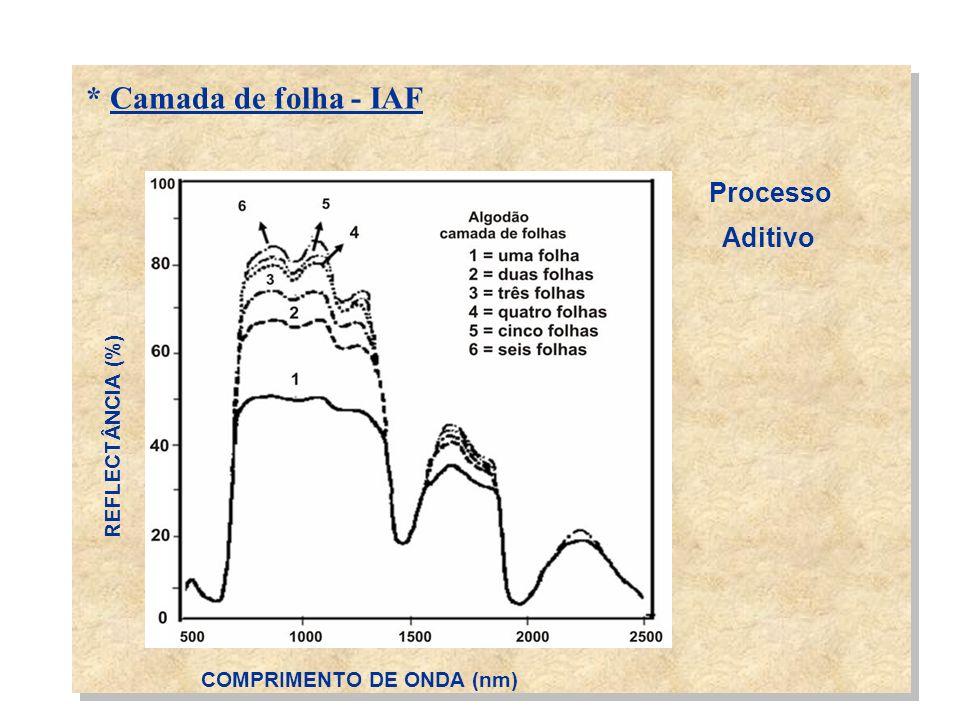 * Camada de folha - IAF Processo Aditivo REFLECTÂNCIA (%)