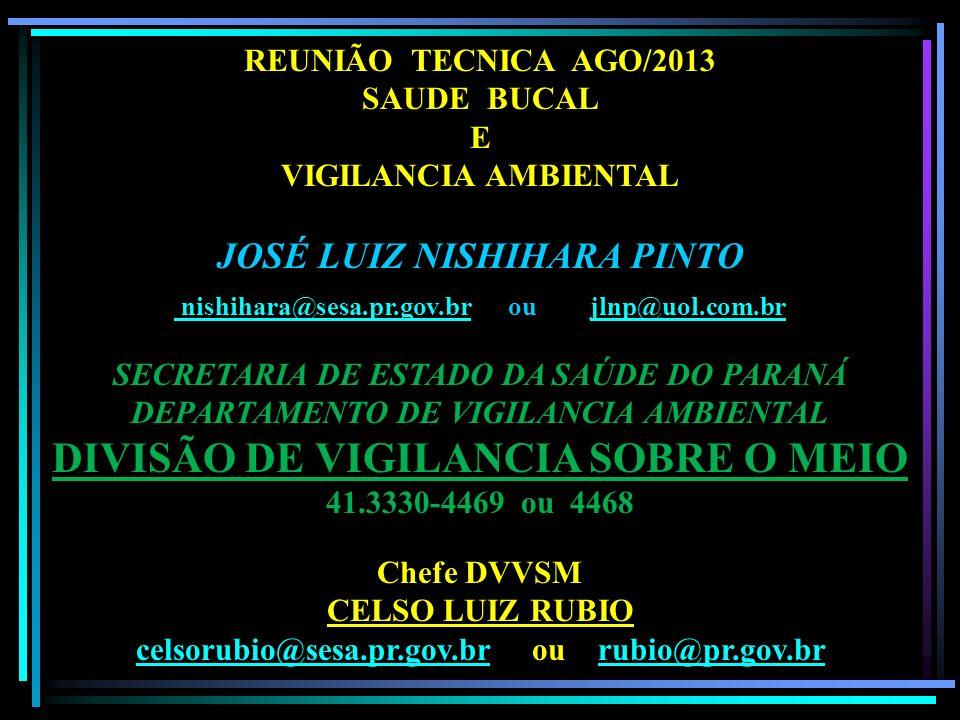 REUNIÃO TECNICA AGO/2013 SAUDE BUCAL