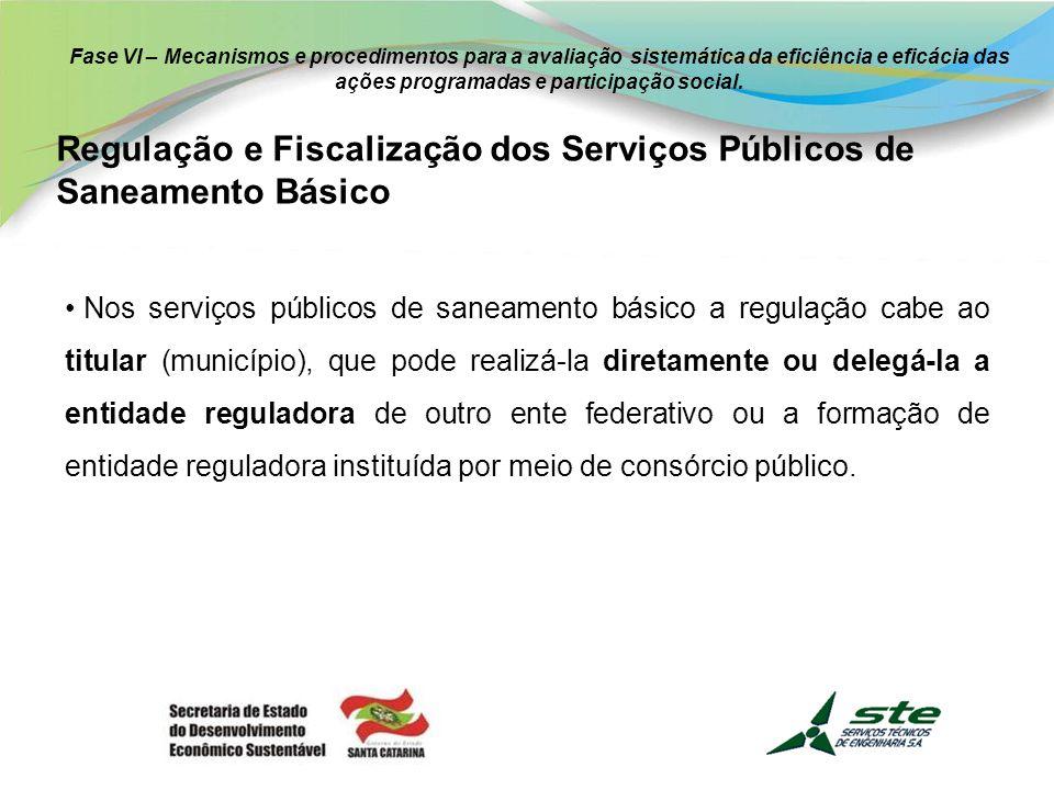 Regulação e Fiscalização dos Serviços Públicos de Saneamento Básico