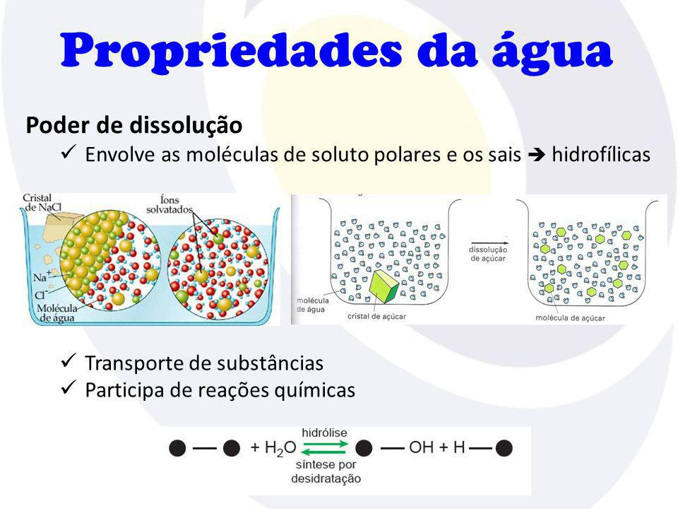 Propriedades da água Poder de dissolução