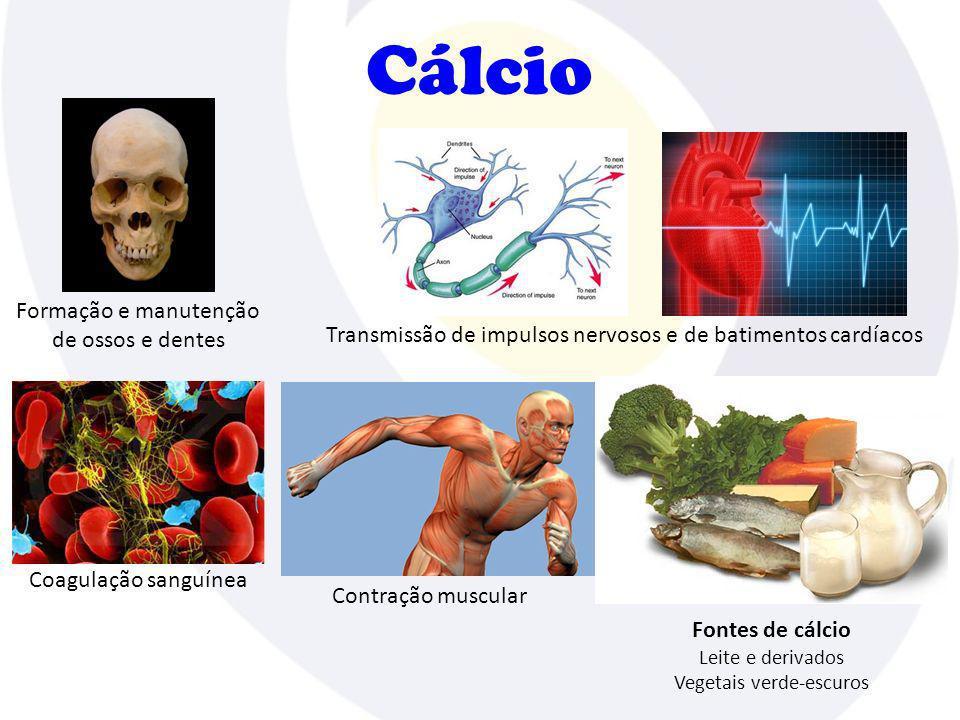 Cálcio Formação e manutenção de ossos e dentes