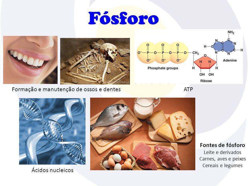 Formação e manutenção de ossos e dentes