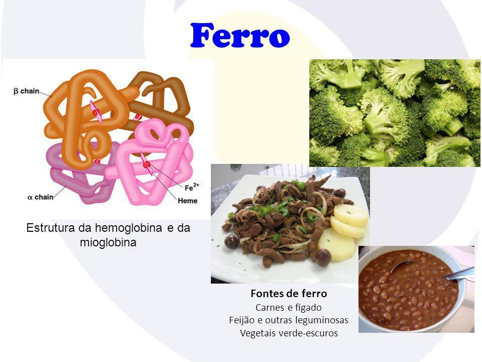 Ferro Estrutura da hemoglobina e da mioglobina Fontes de ferro