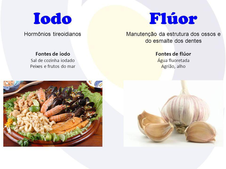 Iodo Flúor Hormônios tireoidianos