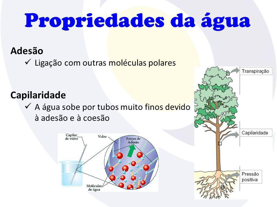 Propriedades da água Adesão Capilaridade