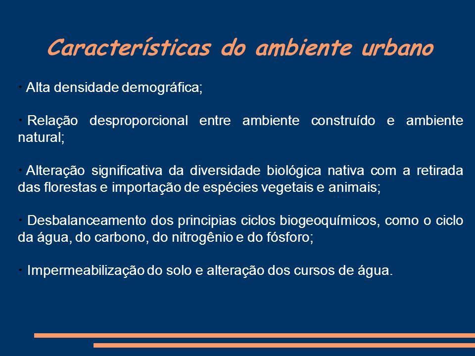 Características do ambiente urbano