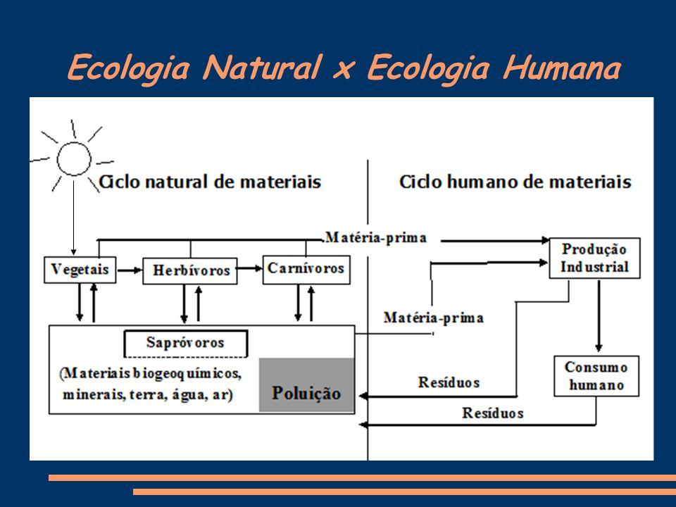Ecologia Natural x Ecologia Humana