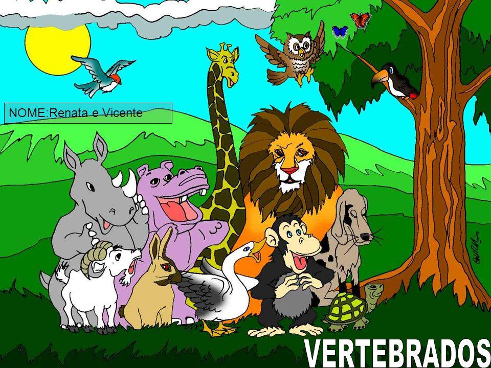 NOME:Renata e Vicente VERTEBRADOS