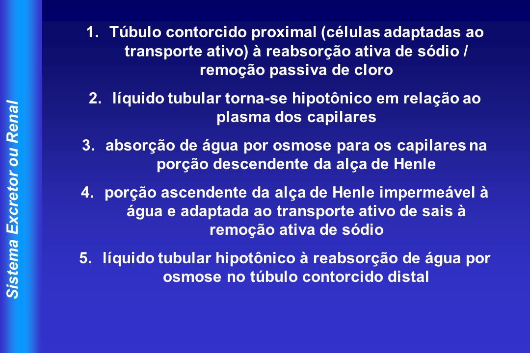 líquido tubular torna-se hipotônico em relação ao plasma dos capilares