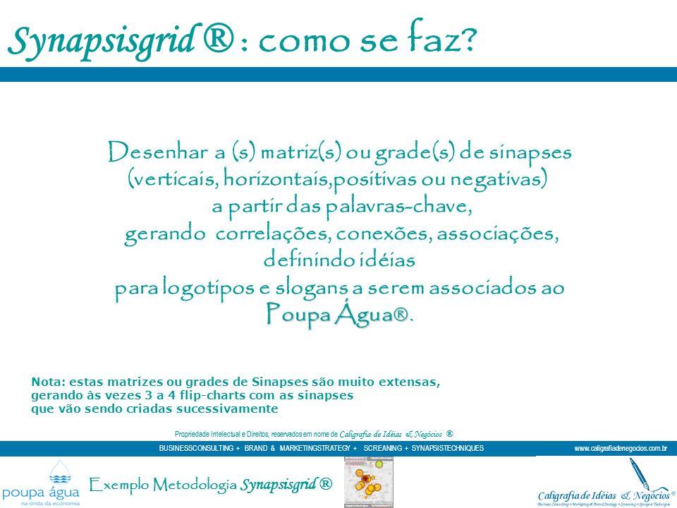 Synapsisgrid ® : como se faz