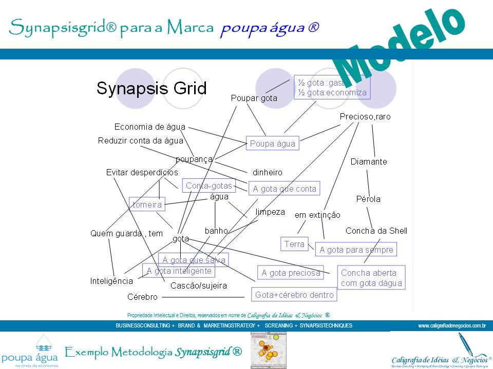 Modelo Synapsisgrid® para a Marca poupa água ®
