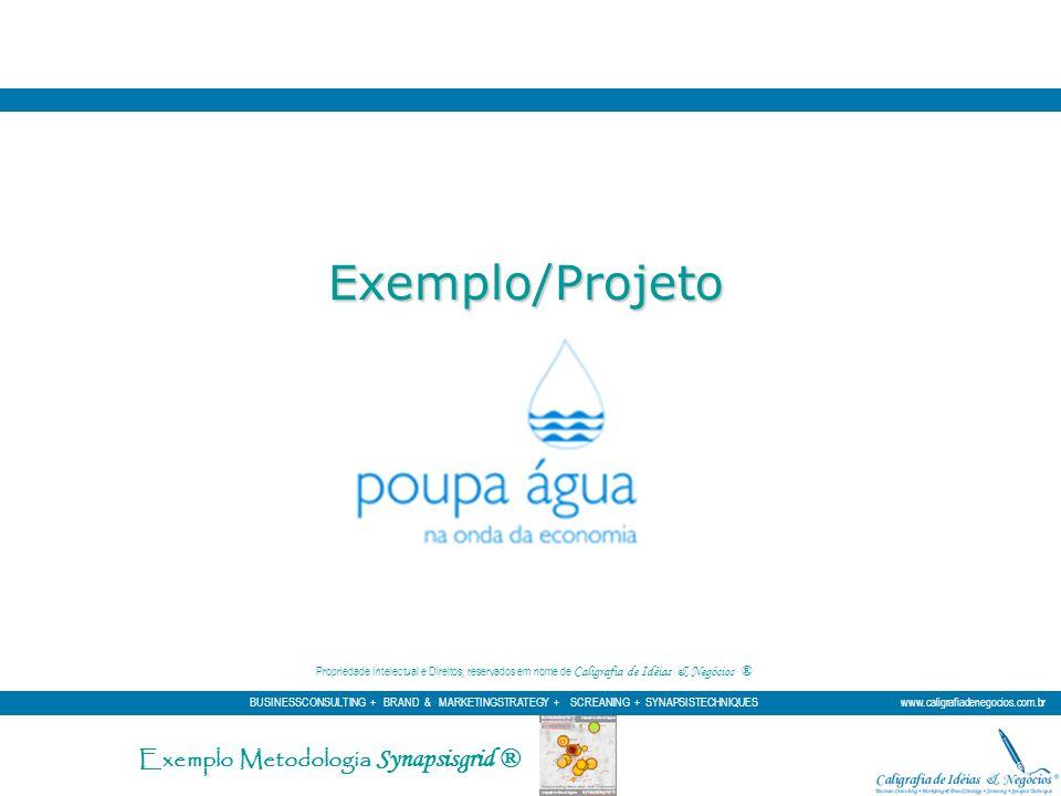 Exemplo/Projeto Exemplo Metodologia Synapsisgrid ®
