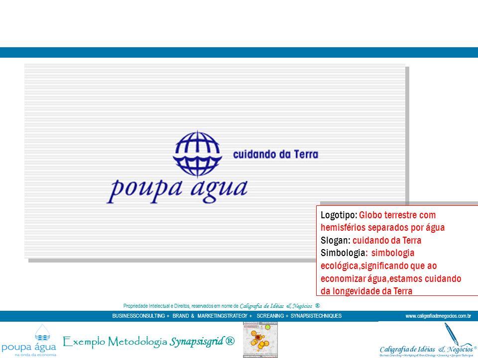 Exemplo Metodologia Synapsisgrid ®