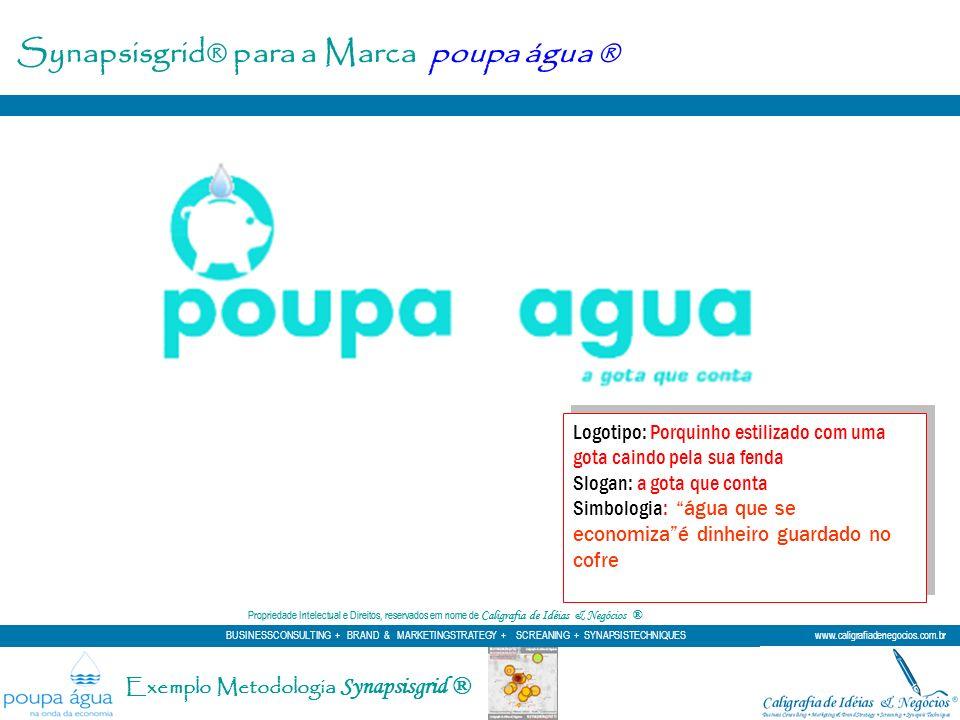 Synapsisgrid® para a Marca poupa água ®