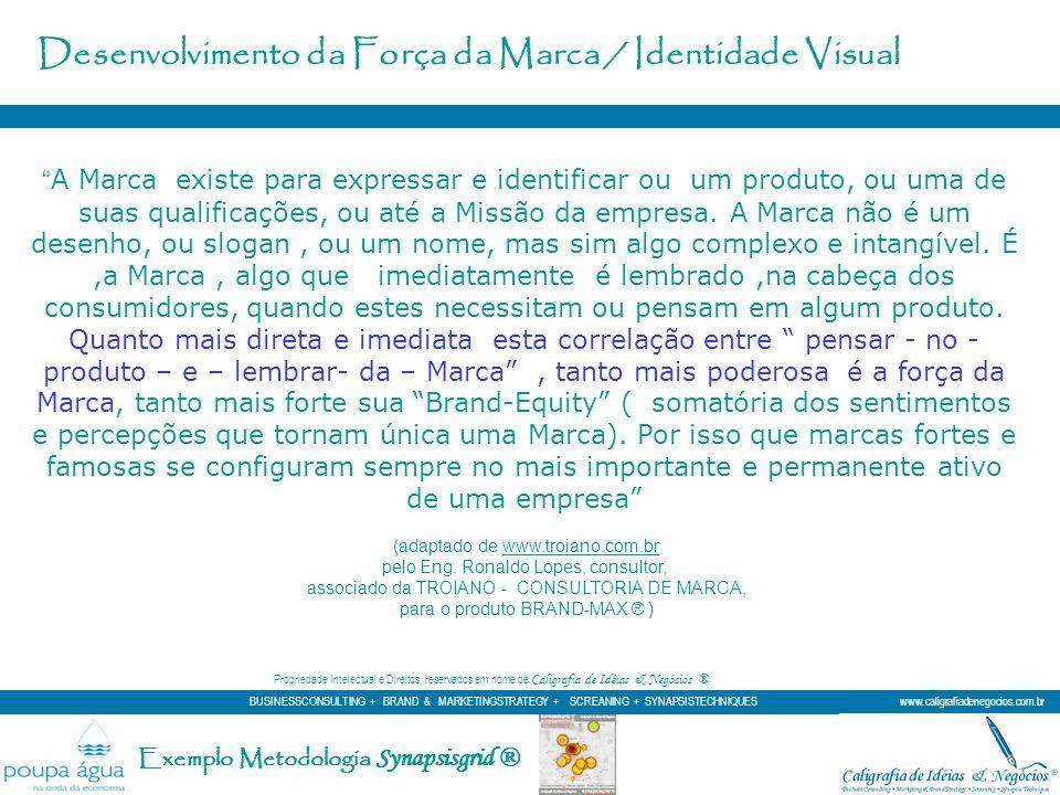 Desenvolvimento da Força da Marca / Identidade Visual