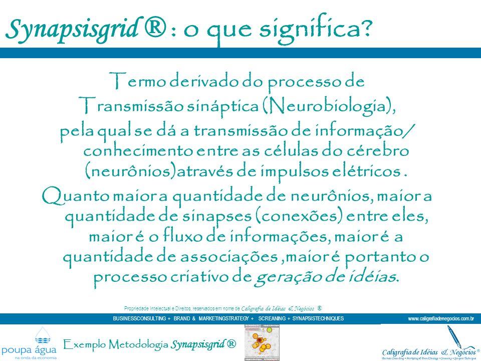 Synapsisgrid ® : o que significa