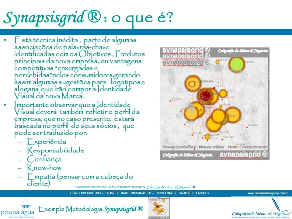 Synapsisgrid ® : o que é