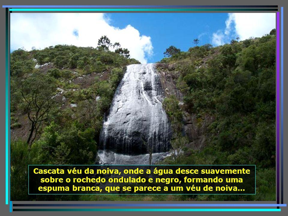 P0011604 - URUBICI - CASCATA VÉU DE NOIVA-650