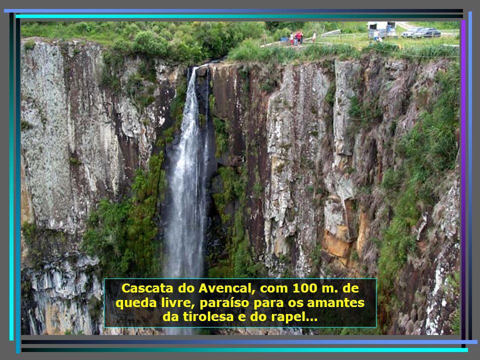 P0011240 - URUBICI - CASCATA DO AVENCAL E TIROLESA-650