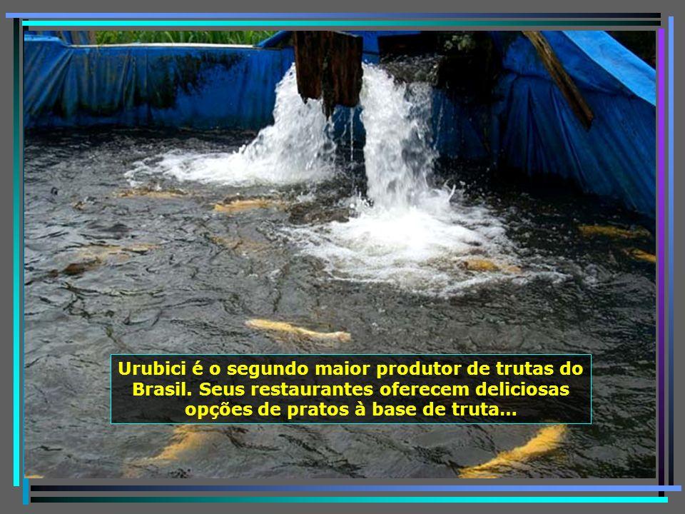 P0011230 - URUBICI - CRIADOURO DE TRUTAS-650