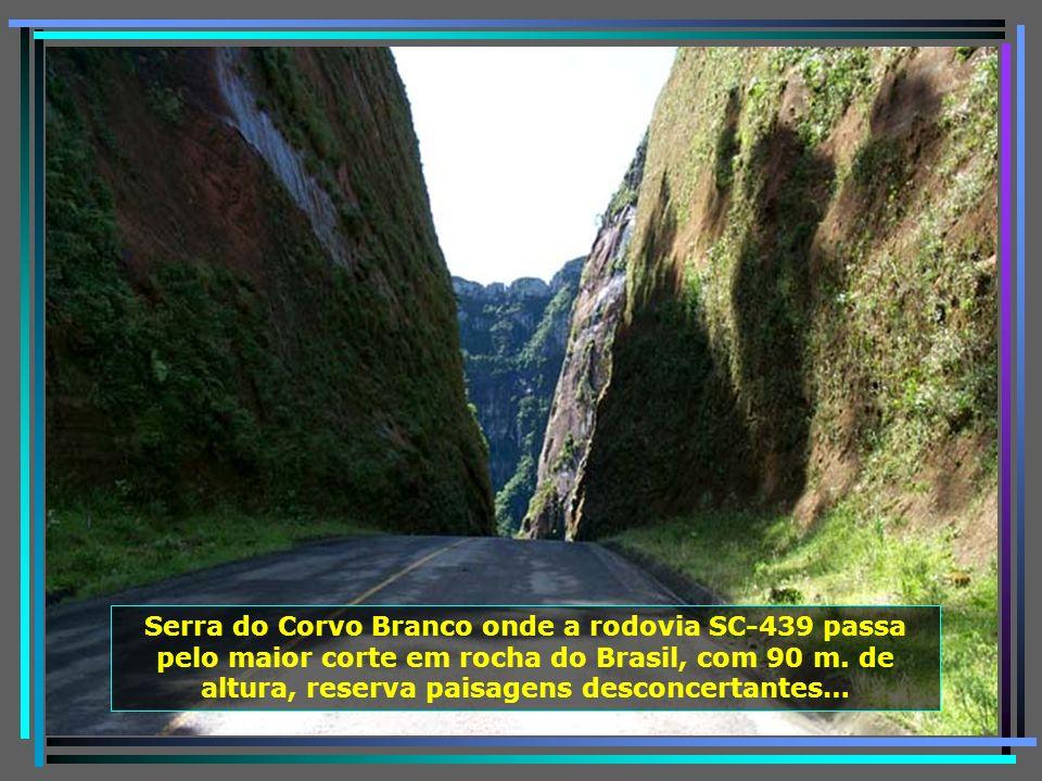 P0011559 - URUBICI - SERRA DO CORVO BRANCO-650
